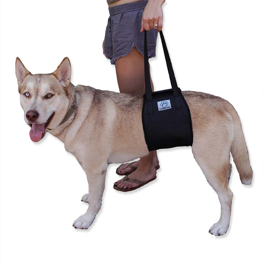 Vet Approved Dog Lift Support Harness My Esa Doctor