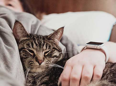Does your pet provide you with emotional support?