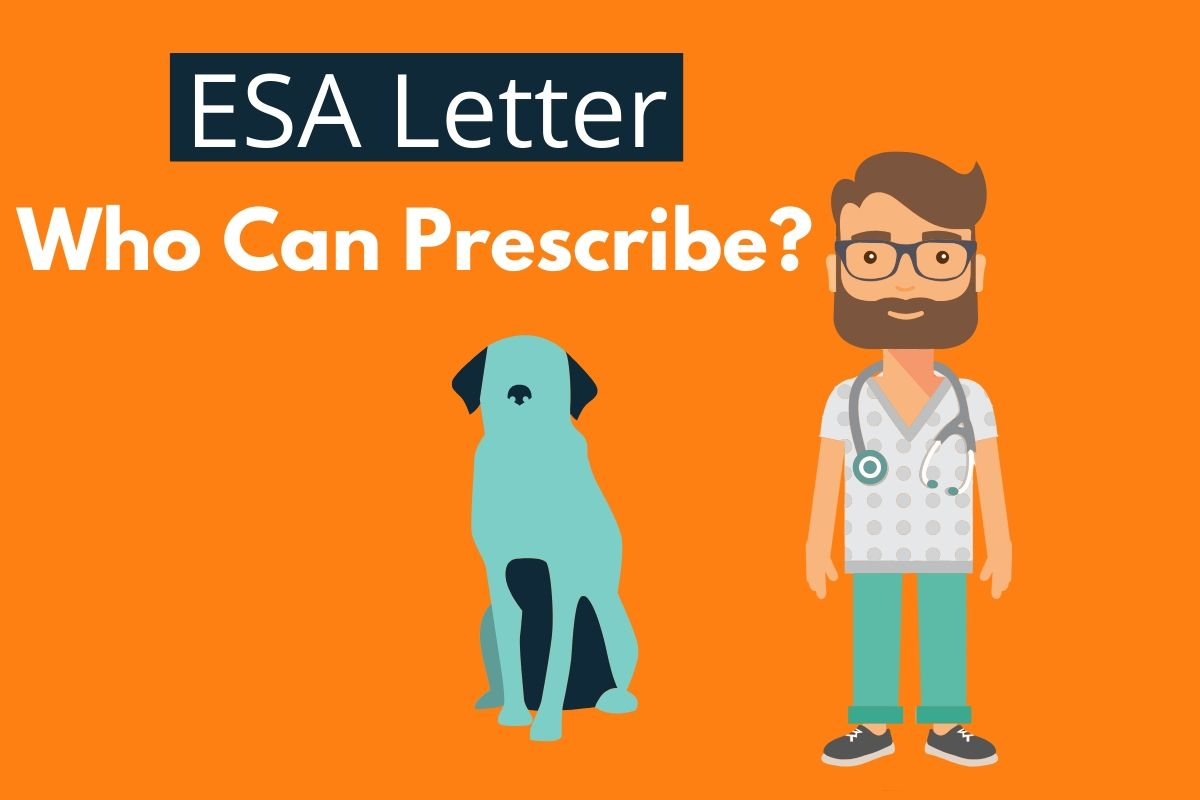 Can a Physician Write an ESA Letter? - Ask a Doctor for an ESA Letter